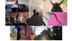 photo one top left: a musician sits on a sofa with their bass; photo two below: a musician sits reading books with plants and instruments; photo three below: a musician with their upright bass with a backdrop of nature; photo four middle: the bottom of a striped skirt and feet; photo five top right: the shadow of a person with their arms in the air; photo six below: the bottom of a snake on a pink rug; photo seven below: a scene of trees, sky, clouds, and the sun.