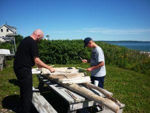 driftwood xylophone