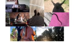 IMPR collage